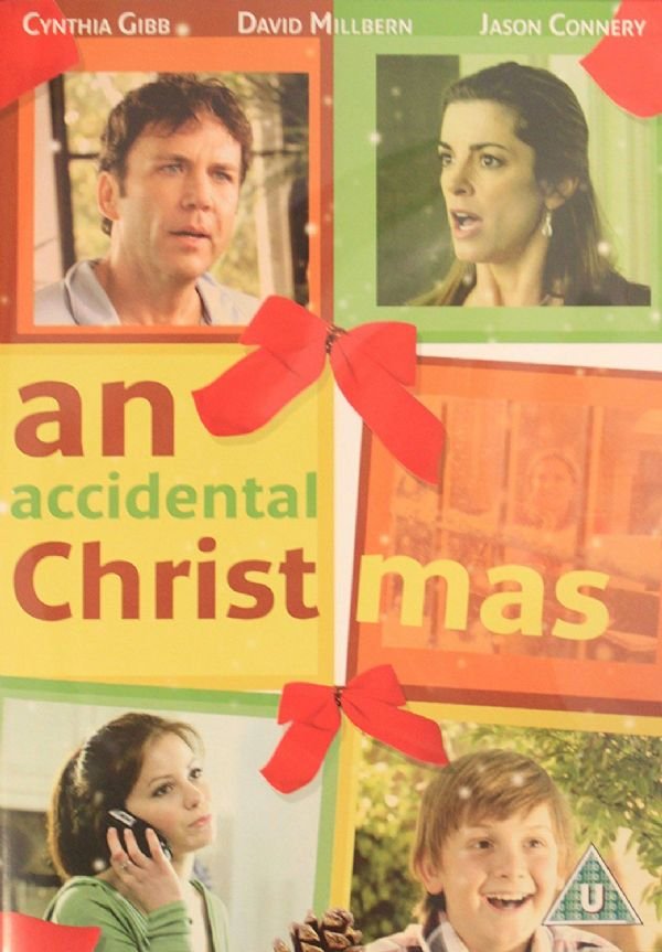 AN ACCIDENTAL CHRISTMAS DVD 2014 (USED)